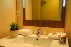 Hotel Villa Val Senart Essonne_127