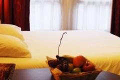 Hotel Villa Val Senart Essonne_046